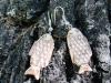 aro-pez-tallado-en-madera