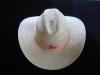 sombrero-junetero